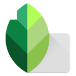 Download Snapseed for Android free