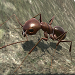 Download Ant Simulation 3D for Android free